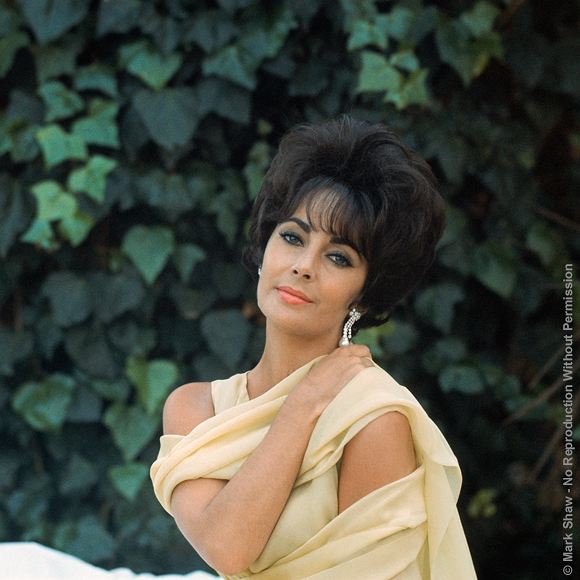 "Shot for Life magazine in April 1961, this was the second time Mark Shaw had photographed Elizabeth Taylor for the magazine. She is pictured here wearing the ""Soiree a Rio"" dress from Dior's Spring-Summer 1961 Haute Couture collection. The source for this image was a vintage 2.25"" x 2.25"" color transparency."