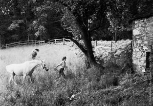 Shot For LIFE In 1959, Jackie Kennedy Leads Sagebrush Across A Meadow At Merrywood, Her Mother's Virginia Estate. This Image Is Also Part Of The Mark Shaw Photographic Archive's Fine Art Gallery Collection. The Source For This Image Was A Vintage 35mm Black And White Negative.