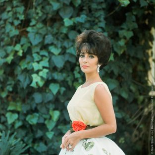 "Mark Shaw Was Sent By LIFE To Photograph Elizabeth Taylor For The April 28, 1961 Issue. The Images He Took Were Never Used For The Article That Celebrated Her Acceptance Of The Oscar For Best Actress Of 1960 For Her Role As A Semi-pro Call Girl In The Movie Butterfield 8. Shaw's Stunning Portraits Show Taylor In Her Oscar Ceremony Finery, A Dress Called ""Soiree A Rio"" From Dior's Spring-Summer 1961 Haute Couture Collection. The Source For This Image Was A Vintage 2.25"" X 2.25"" Color Transparency."