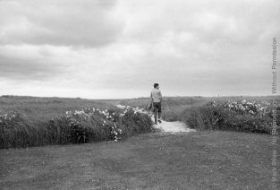 JFK's Favorite Photo Of Himself Was Taken By Mark Shaw In 1959 On The Dunes Near Hyannis Port. This Photo Has Been Used Frequently, Since JFK's Assassination, To Symbolize His Presidency. The Source For This Image Was A Vintage 35mm Black And White Negative.