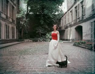 "Balenciaga Red And White Satin With Black Cat. Deemed The ""Prettiest Dress In Paris"" Balenciaga's Untrimmed Faille And Satin Gown Is Admired By A Wandering Feline. The Paris House Dates From The Period Of Louis XIII. A Version Of This Photograph Appeared In The September 5, 1955 Issue Of LIFE. The Source For This Image Was A Vintage 4"" X 5"" Color Transparency."