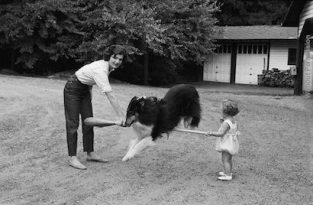 Jackie And Caroline Kennedy Play With The Family's Collie On The Virginia Estate Of Jacqueline's Mother, Mrs. Hugh D. Auchincloss. The Collie Is A Member Of The Herding Group That Originated In England. Committed To The Flock, Collies Are Gentle And Sweet, Making Them The Perfect Family Members. Photographed In 1959 For LIFE Magazine. The Source For This Image Was A Vintage 35mm Black And White Negative.